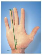 la mesure de main prise pour la souris ergonomique Handshoe